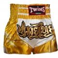 Шорты для тайского бокса Twins Special Dragon Gold