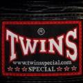 Боксерские Перчатки Twins Special BGVL-3 Черные