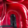 Перчатки Файртекс FairtexBGV14Red