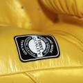 Боксерские Перчатки Twins Special BGVL6 Gold