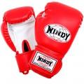 Боксерские перчатки Детские WINDY BSG Black