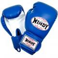Боксерские перчатки Детские WINDY BSG Blue