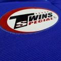 Защита Twins купить