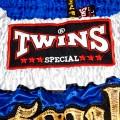Тайские Шорты Twins T-20 Blue