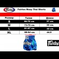 Шорты для тайского бокса FAIRTEX BS-0637