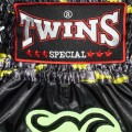 Тайские Шорты Twins Special T-99