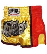 Шорты для тайского бокса Lumpinee Ретро Yellow