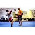 Накладки на ноги для тайского бокса