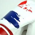 Fairtex Boxing Gloves BGV1 Thai Pride